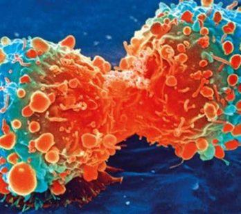 Новое в лечении онкологии